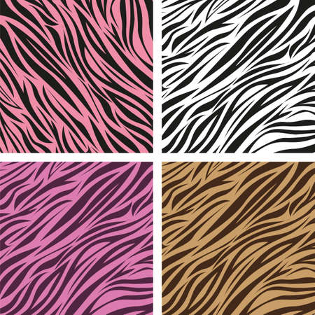 pattern of animal print, zebra skin texture, vector illustration Vector