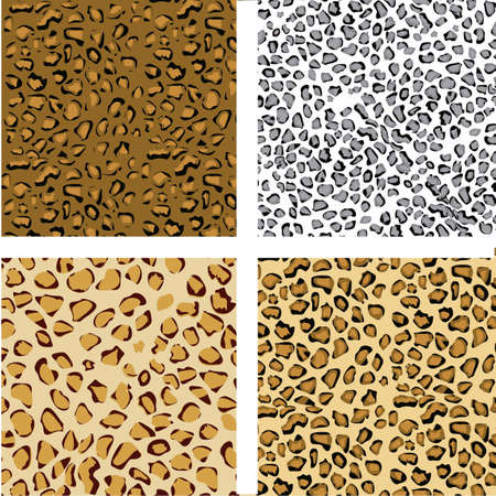 pattern set of animal print, vector illustration Vector