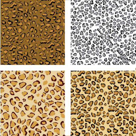 pattern set of animal print, vector illustration Vector