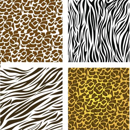 pattern of animal print,  vector illustration Vector