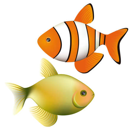 Illustration of fish, isolated on white background,  illustration Vector