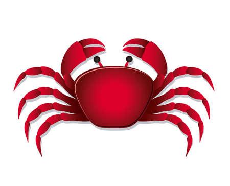 Illustration of crab, isolated on white background, illustration