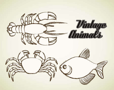 Illustration of sea animals, fish, crab and lobster, illustration Vector