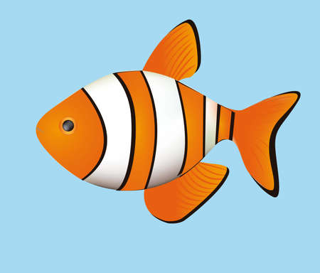 Illustration of fish, isolated on white background, vector illustration Vector