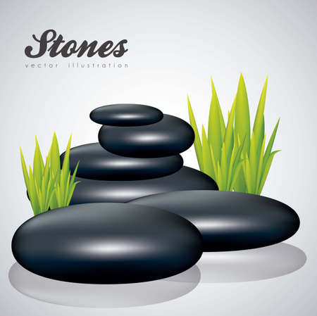 illustration of black stones with grass isolated on white background, vector illustration Vector