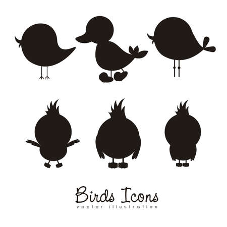 large group of animals: Illustration of birds icons, icons with animal silhouettes.