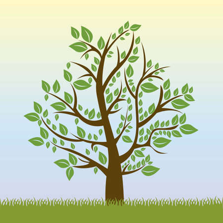 Illustration of tree with green leaves, summer season, vector illustration Stock Vector - 16183871