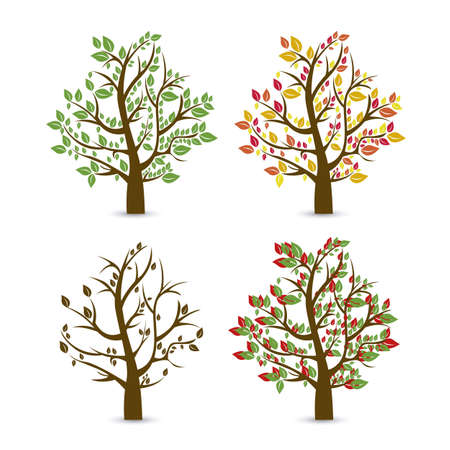 winter cherry: Trees seasons. Spring, summer, autumn and winter. vector illustration