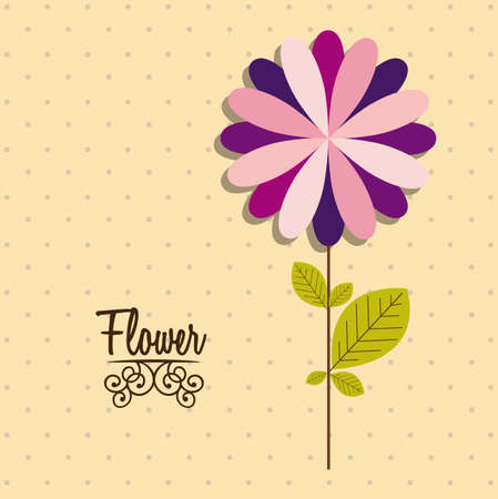 Illustration flowers icons, spring and valentines day, vector illustration Stock Vector - 17002438
