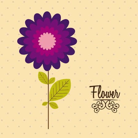 Illustration flowers icons, spring and valentines day, vector illustration Stock Vector - 17002442