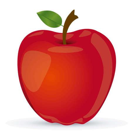 manzana roja: Ilustración Vectored de la manzana roja, manzana ilustración vectorial realista