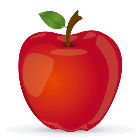 vectored: Vectored illustration of red apple, apple realistic vector illustration