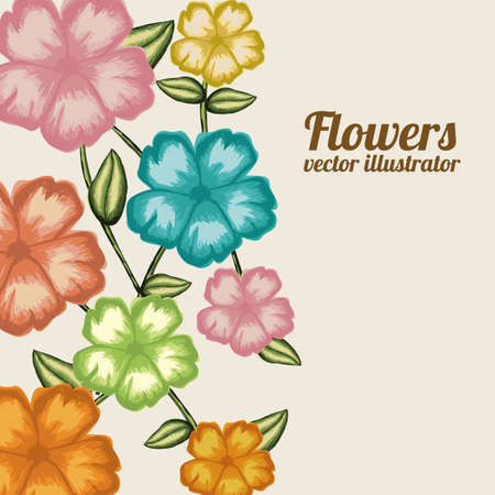 flower card: flowers design over cream background illustration