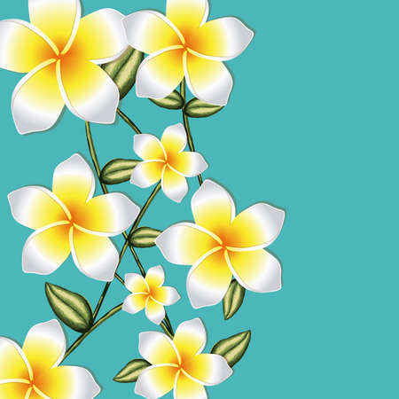 orchid design over blue background illustration  Vector