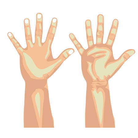 nonverbal: ten  hands over white background