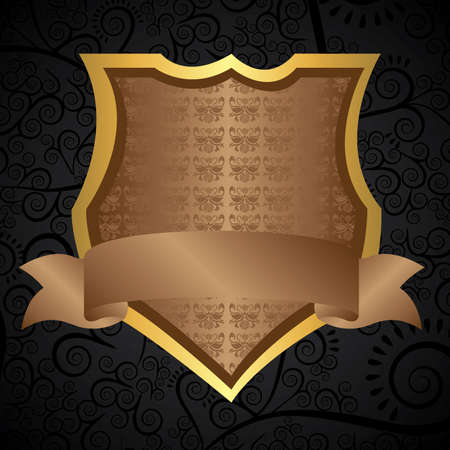 shield design over black background vector illustration  Vector