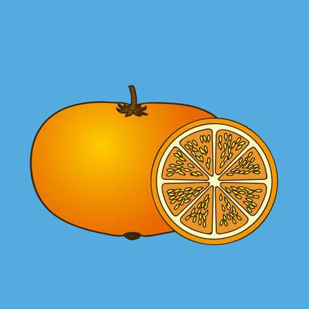 drinkseal: orange citrus fruit  over blue background vector illustration