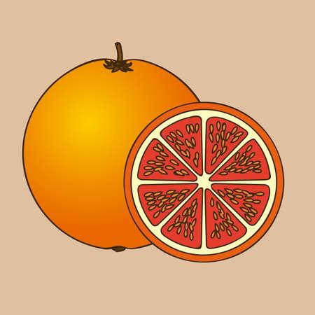 drinkseal: orange citrus fruit  over pink background vector illustration