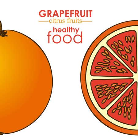 grapefruit citrus fruit  over white background vector illustration Stock Vector - 22067124