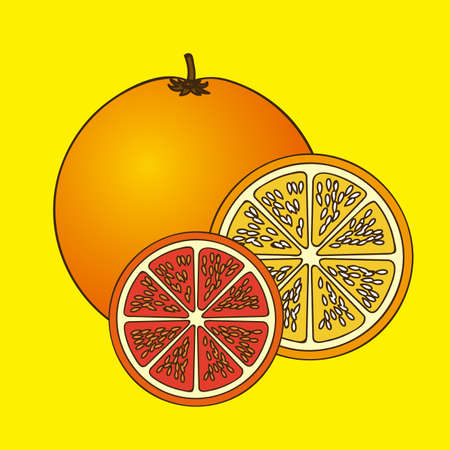 halved: citrus fruit over yellow background vector illustration
