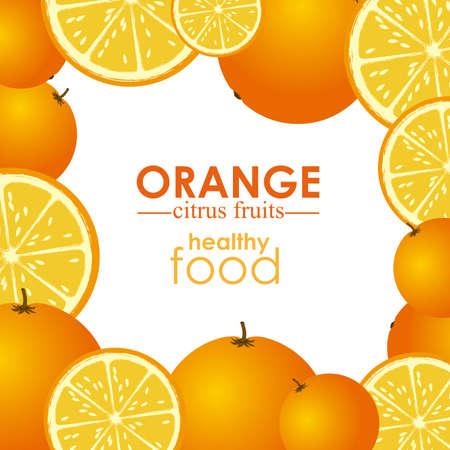 orange citrus fruit  over white background vector illustration