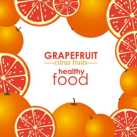halved: grapefruit citrus fruit  over white background vector illustration