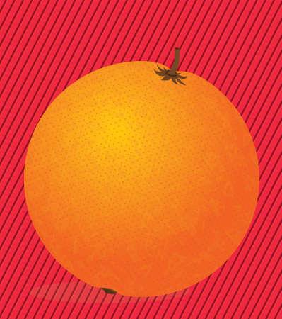 drinkseal: orange citrus fruit  over lineal background vector illustration  Illustration