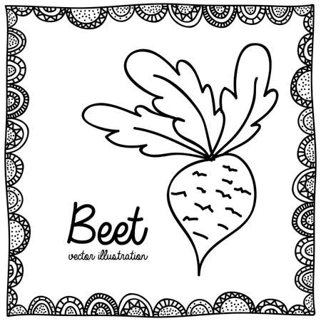 beet drawing over white background vector illustration Stock Vector - 22769988