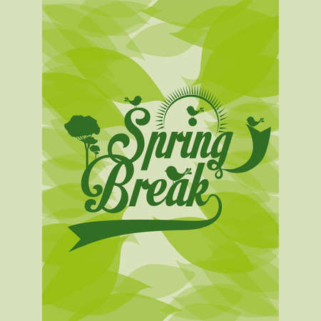 spring design over leafs background vector illustration