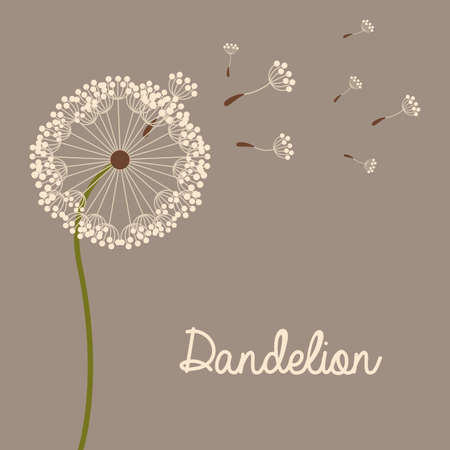 flowers design over gray  background vector illustration   Vector