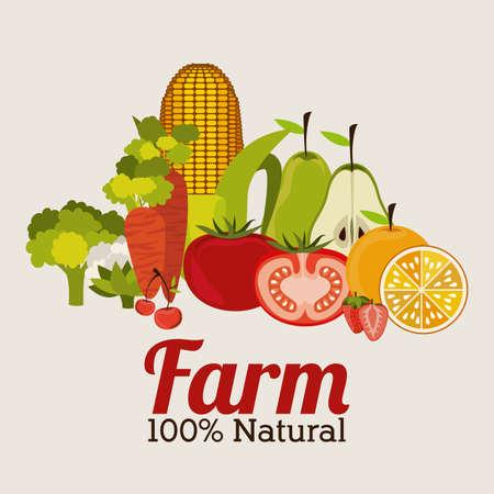 farm design over gray   background vector illustration Vector