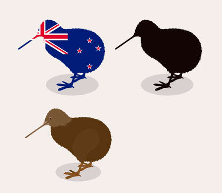 new zealand: New zealand design over white background, vector illustration Illustration