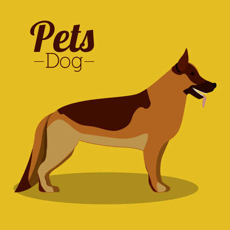 Pets design over yellow background,vector illustration Vector
