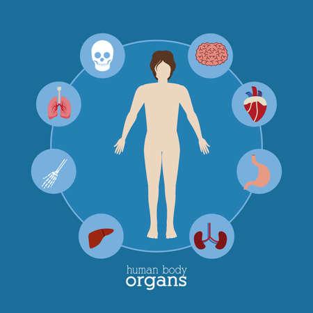 enfermedades del corazon: cuerpo, el desing sana sobre, fondo azul, ilustraci�n vectorial. Vectores