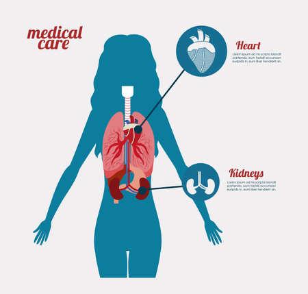 viscera: body,healthy desing over, white background, vector illustration.