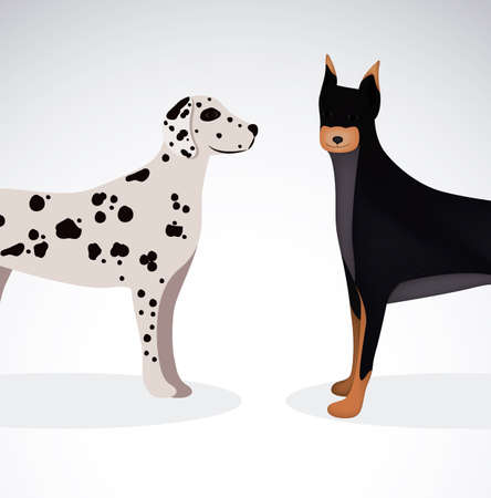 trusting: Pet design over white background,vector illustration