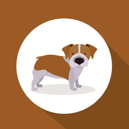 trusting: Pet design over brown background,vector illustration