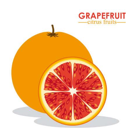 market gardening: Fruit design over white background, vector illustration Illustration