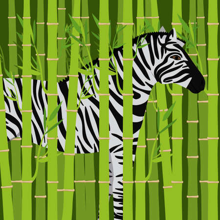 tropical climate: Jungle design over landscape background, vector illustration