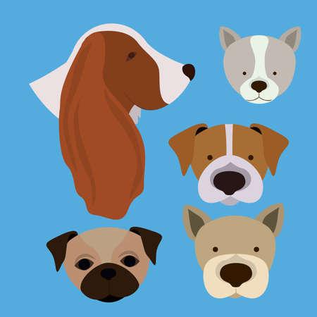 trusting: Love pet design over blue background, vector illustration Illustration