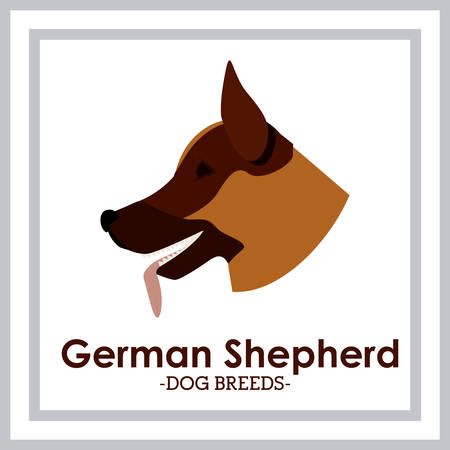 trusting: Pets Love design over white background, vector illustration