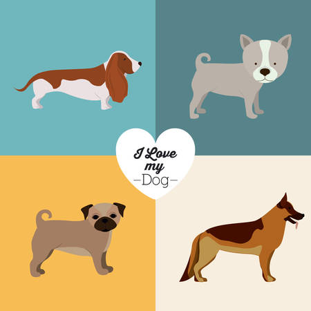 trusting: Pets Love design over colored background, vector illustration