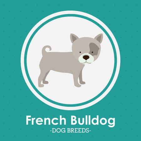trusting: Pets Love design over green background, vector illustration Illustration