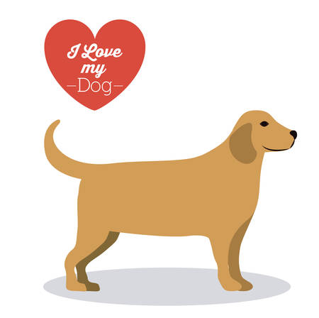 lav: Pets Love design over white background, vector illustration