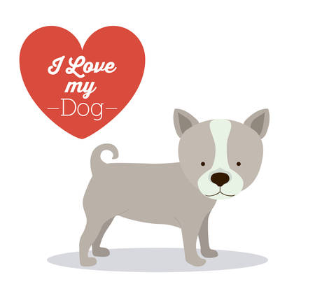 trusting: Pets Love design over white background, vector illustration