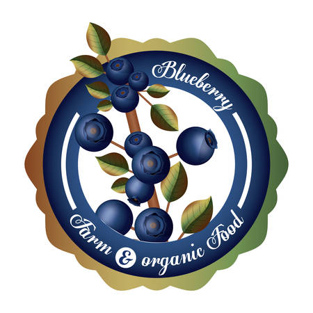 seal stamp: Blueberry design over white background, vector illustration Illustration