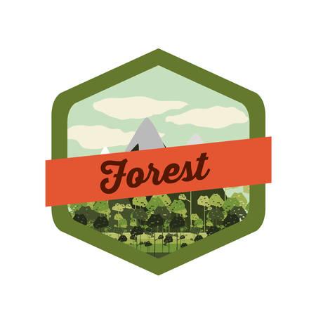 mountain road: Forest  design over white background, vector illustration