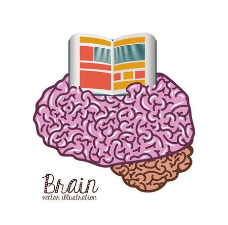 brain illustration: Brain concept over white and flat background design, vector illustration