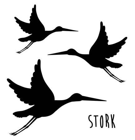 stork: cute stork design, vector illustration eps10 graphic