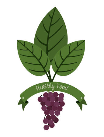 agriculture wallpaper: organic and healthy food design, vector illustration eps10 graphic